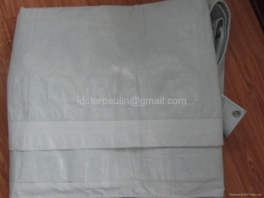 4X5m,200gsm,Reinforced Plastic Tarpaulin Sheet 3
