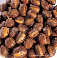 Organic roasted chesnut in hebei province