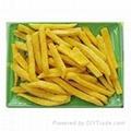 Dried Sweet Potato Chip