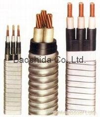 ESP(Electric Submersible Pump) Power Cable