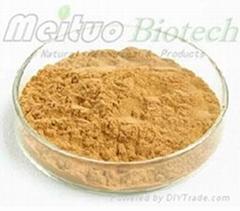 Ginkgo Biloba Extract - Flavoglycosides