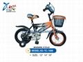 BMX kid bike