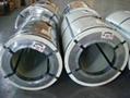 Color hot dip galvanized steel coil