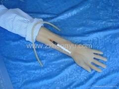 Full function simulation of venous transfusion arm model