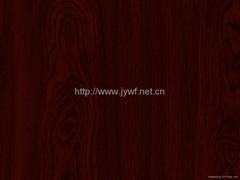 Wooden design ppgi