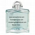 famous brand name oem perfume bottles 3