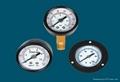 Y系列一般壓力表