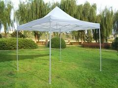3x3M Pop Up Folding Gazebo economic Tent