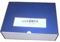 礼品盒 1