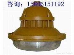 防水防塵防腐燈