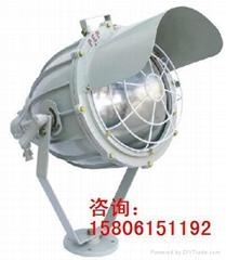 BAT51防爆投光燈