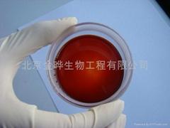 北京金晔虾青素南极磷虾油