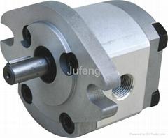 High pressure gear pump