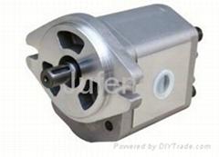 Double row gear pump