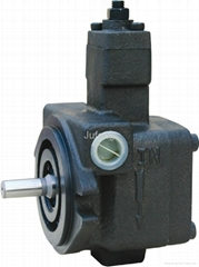 Variable vane pump
