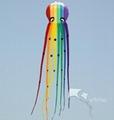 Soft Kite,Rainbow Octopus,8m,WalkinSky,inflatable kite--Leader kite