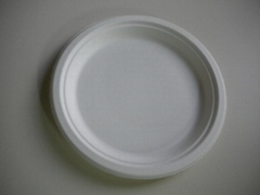Disposable 9'' Plate