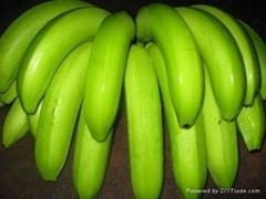 Fresh Pineapple,Fresh Banana,Navel Orange