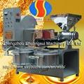 Rapeseed Oil Press Machinery