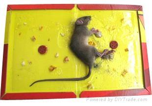 灭鼠公司 3