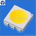 good price 5050 white smd LED