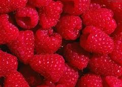 FD IQF raspberry
