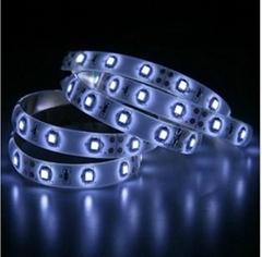 3528滴胶防水LED软灯条