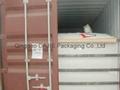 Flexitank for loading Glycol