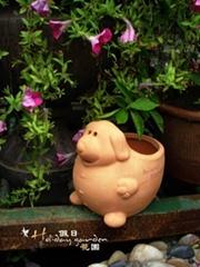 細緻紅陶花盆