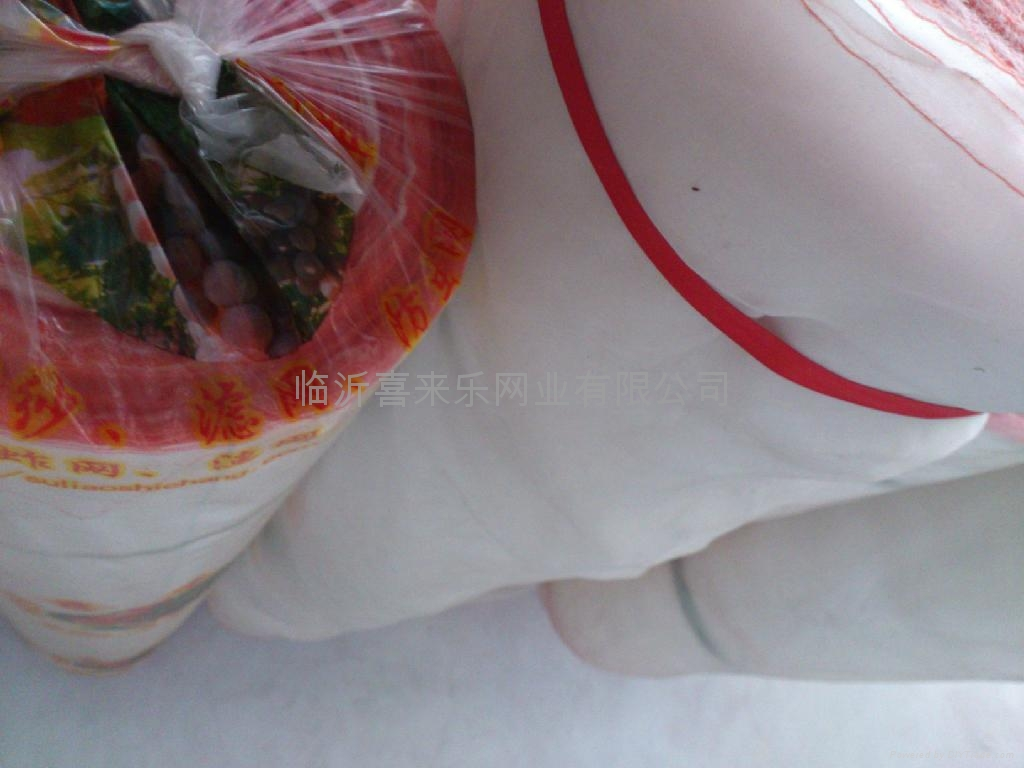 12 mesh Plastic polyethylene wire netting 4