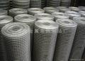 熱鍍鋅鋼絲網