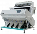 Peanut Color Sorter from Buhler