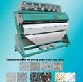 Color Sorter Machine from Buhler