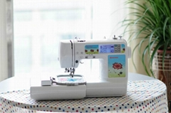 Domestic Embroidery and Sewing Machine