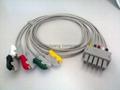 Siemens 5-lead leadwires