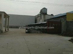 Jinxiang Yixin Trading Co.,Ltd