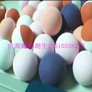 七彩EVA玩具球 4