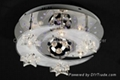 DSC-2574 Crystal Low-voltage LED Ceiling Light