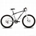 carbon mountain bike frmae