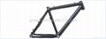 carbon mountain bike frmae 3