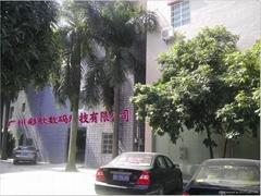 廣州彩歌數碼科技有限公司