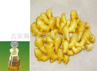 生姜油 1