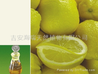 柠檬油 1