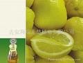 檸檬油 1