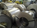 Stainless Steel Strip/Stainless Steel Coil