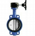 Pin-less Centerline Butterfly Valve