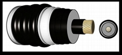 EHV 110kv XLPE Insulated Power Cable