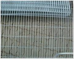 Galvanized welded wire mesh
