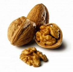 walnut unshelled,sheld