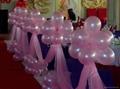 Promotional balloon/latex balloon/wedding balloon 2